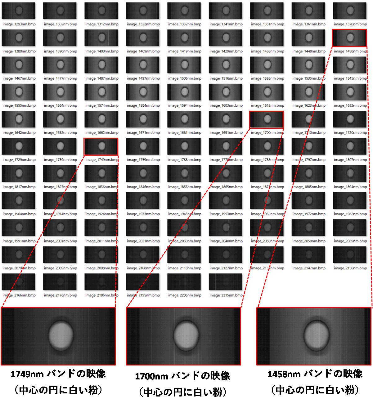 ハイパースペクトルカメラで撮影した塩の画像