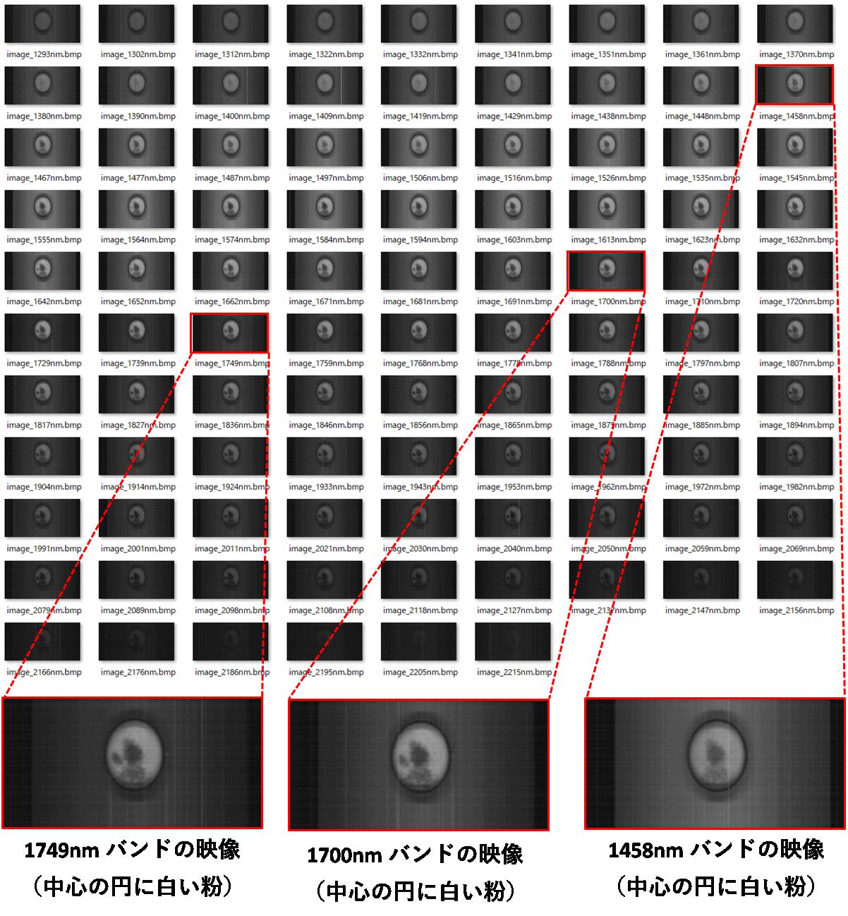 ハイパースペクトルカメラで撮影した塩+重曹+クエン酸の画像