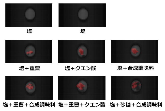 ハイパースペクトルカメラで撮影した1797nmバンド画像に対して gLupeで塩に購入した異物(砂糖、重曹、クエン酸、合成調味料)を検出した例
