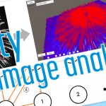 Unity で 3D 画像特徴可視化ツールを作ってみた