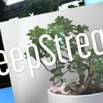 DeepStream プラグイン入門3 ~GPU側で動作するプラグインを構築する~